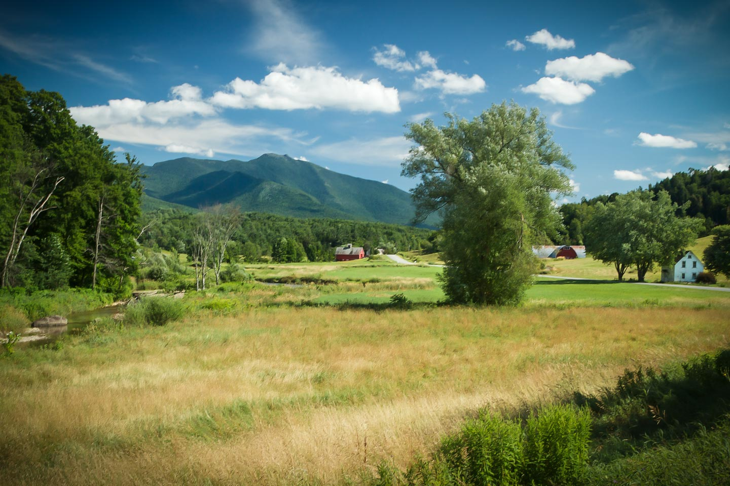 landscape of mt mansfield in background field and trees in foreground a red house and barn in the distance