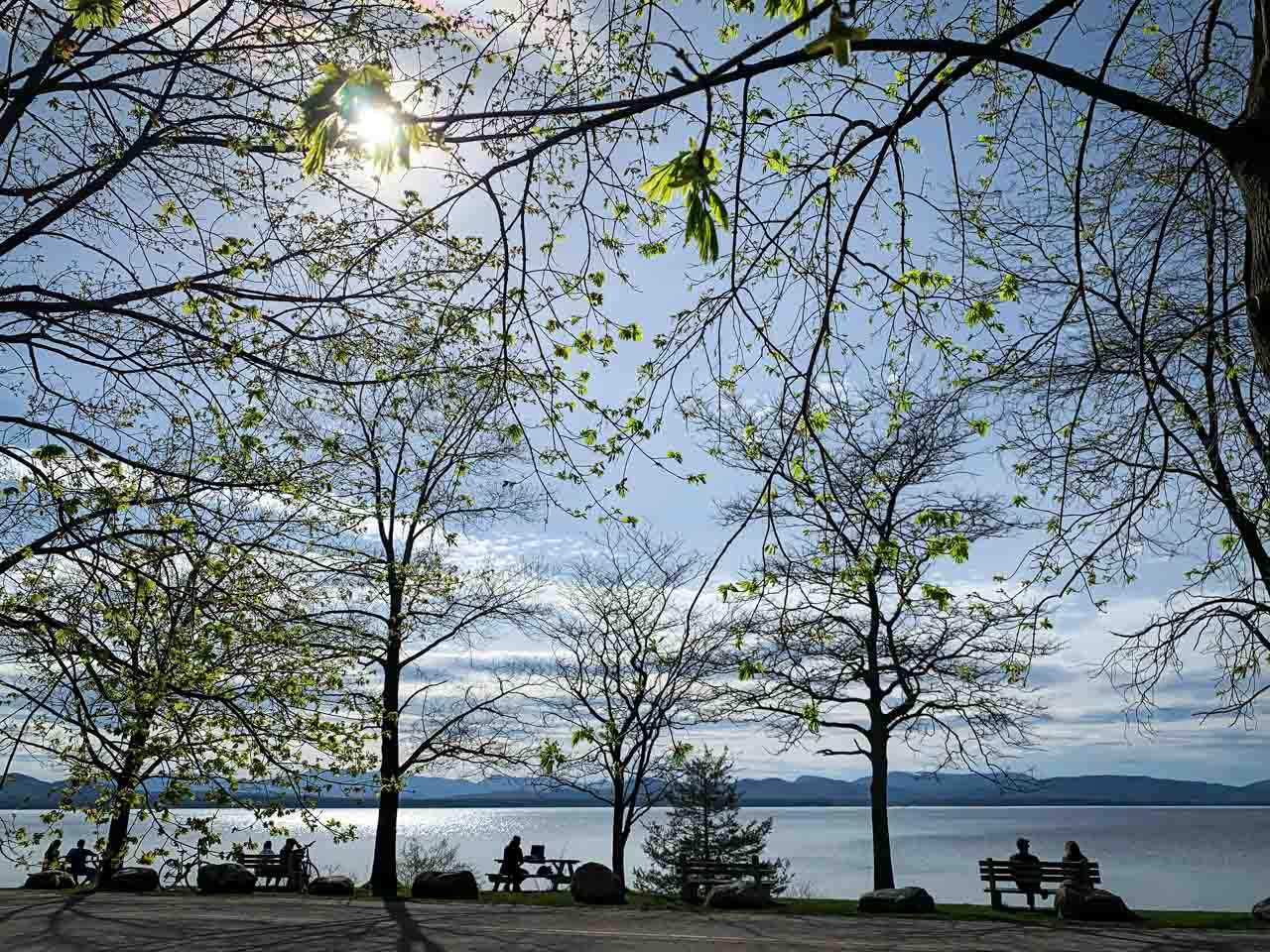 light green leaves just coming out on the trees in the foreground lake with mountains in distance silhouettes of people siting on benches